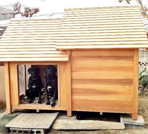 ラブラドールの犬小屋