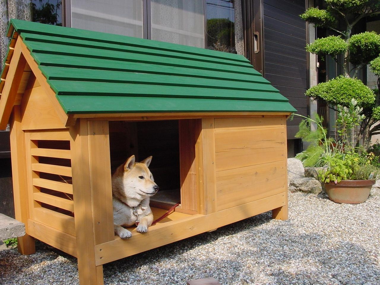 犬小屋・猫小屋・鶏小屋・ウサギ小屋・ブタ小屋などいろいろのハウスを製作しています。 関連記事 h