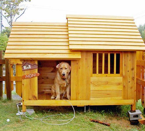 大型犬 犬小屋