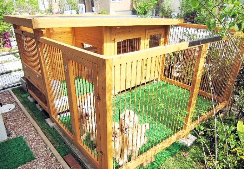 ゴールデンレトリバーの犬小屋 - 犬小屋製作工房Kの犬小屋ブログ ホーム 犬小屋 猫 鶏小屋 屋