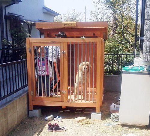 ゴールデンの犬小屋