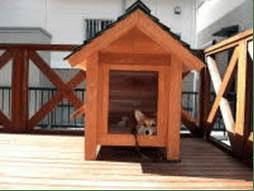 ジャックラッセルテリアの犬小屋